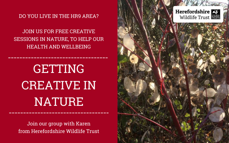 Getting Creative In Nature
